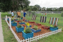 Introduction to the Coalition of Community Gardens – Tampa Bay